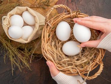 vendita uova fresche lecce